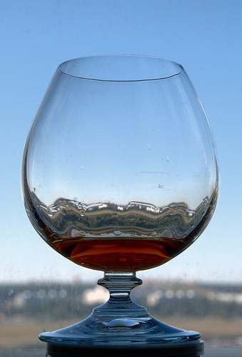 brandy photo