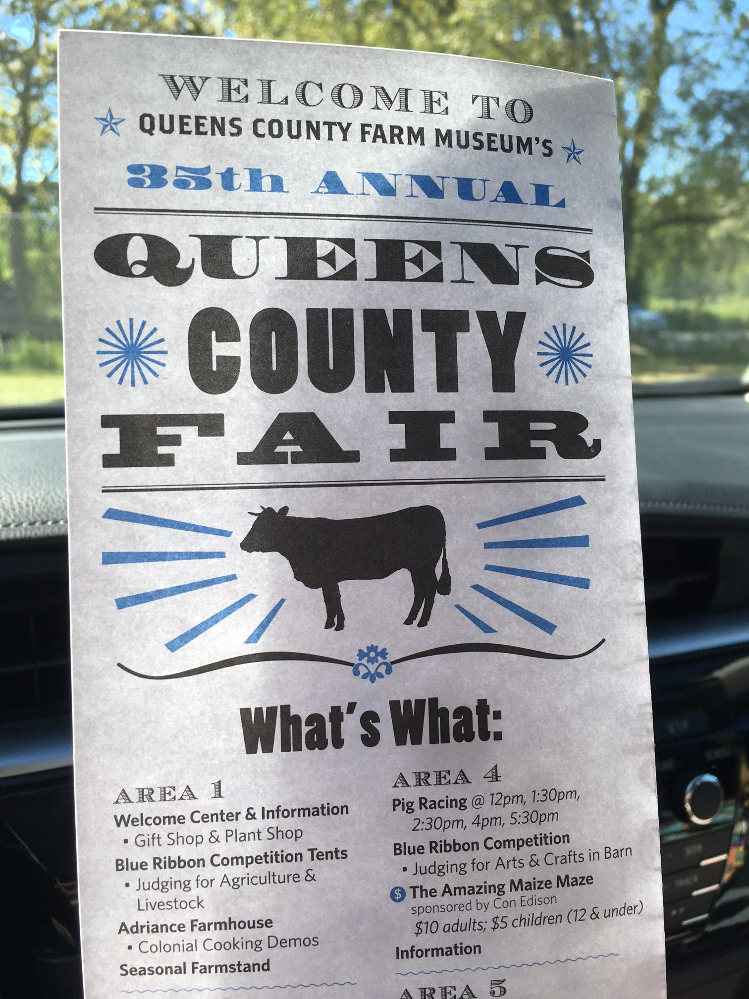 Country in NYC-The Queens County Fair - J. M. Levinton