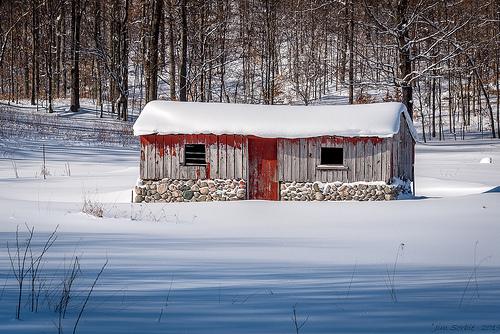 snow house photo